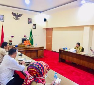 Sinar Mas Land salurkan APD untuk tenaga medis di Provinsi Banten pada Selada (31/03/2020) di Banten/SML