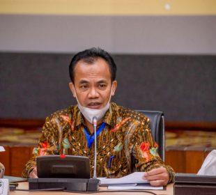 Sekretaris Kementerian Koordinator Bidang Perekonomian Susiwijono Moegiarso/Ekon